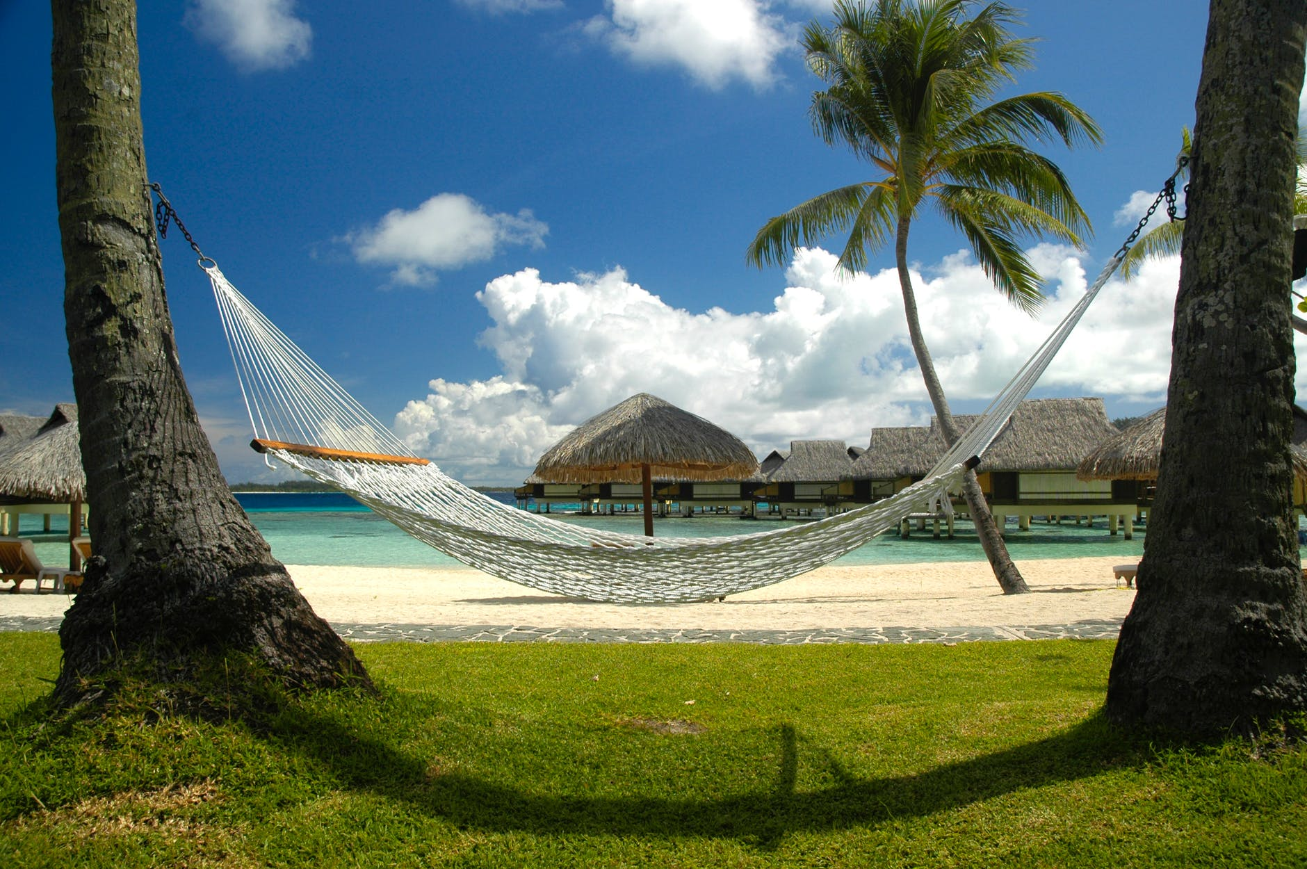 Successful Business Owner - Hammock in Bahamas